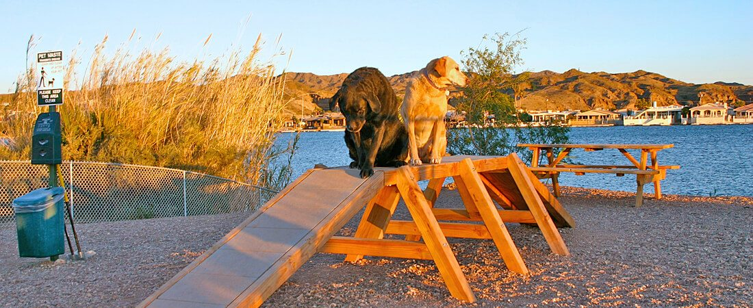 River Front Dog Park at Emerald Cove Resort
